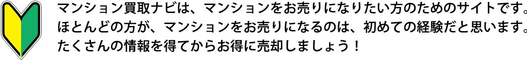 topbnr_01